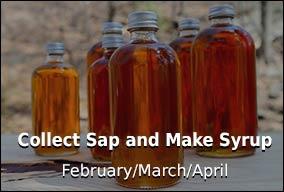 Make Syrup