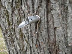 tap tree